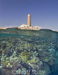 taken a few weeks ago at Big Brother Island in the Red Sea by Geoff Spiby 